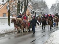 Pferdesegnung 2014 II